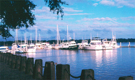 Marina in Beaufort South Carolina