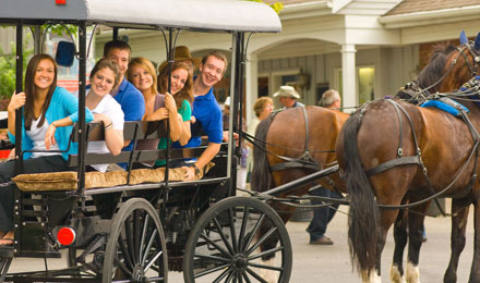 Picture of People on a Horse & Buggy Ride